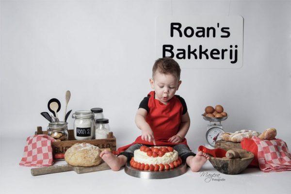 Cake Smash Fotograaf Wijk bij Duurstede - Mayera Fotografie (5)