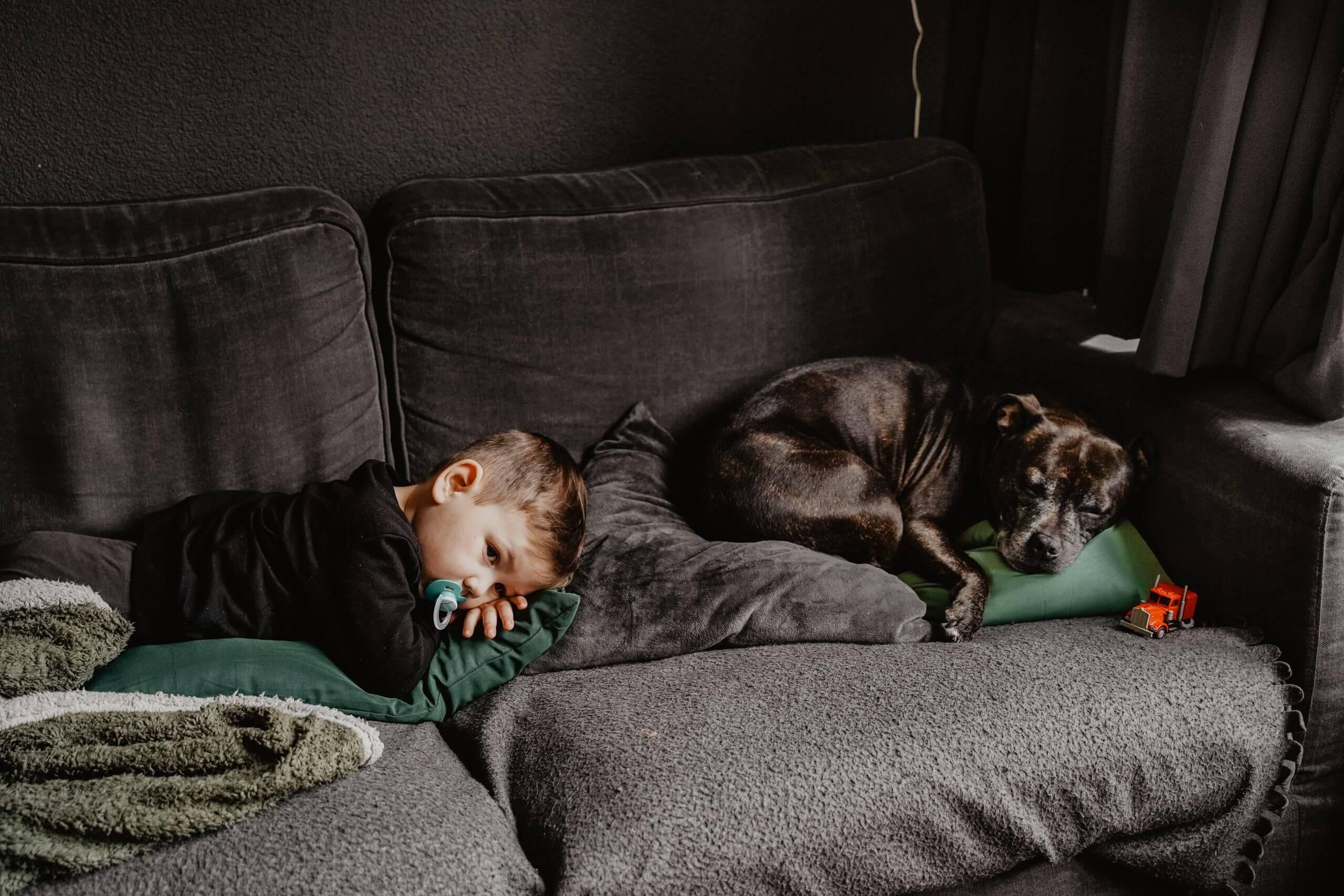 Day in the life jongen hond thuis at home Wijk bij duurstede